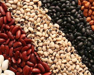 Beans & Nuts