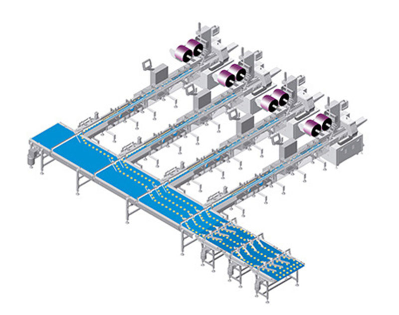 Automatic Packing Line (Lateral fraction one-four material)