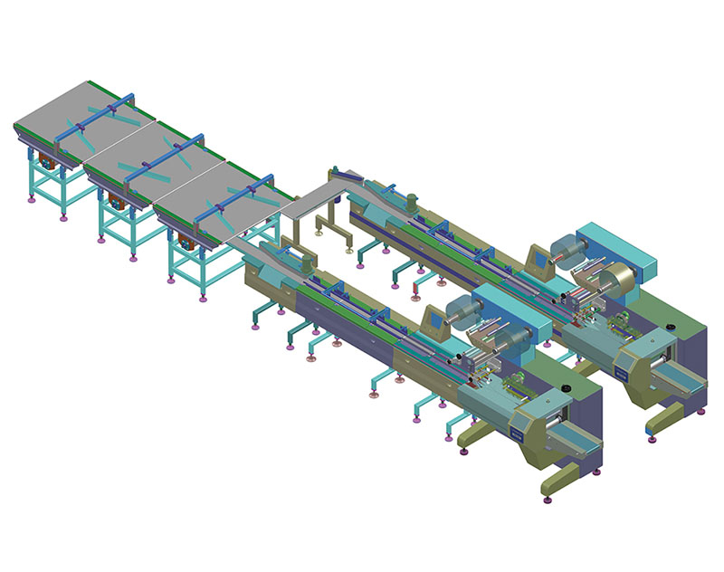 Automatic Feeding Packing System (Straight auto line with two packing machine)