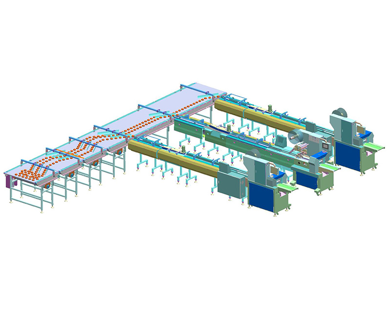 Automatic Packing Line (Lateral fraction one-three material)